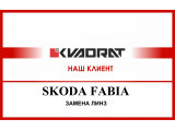 Skoda FABIA   Замена линз